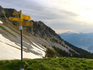 summer;portes-du-soleil;mountain;switzerland